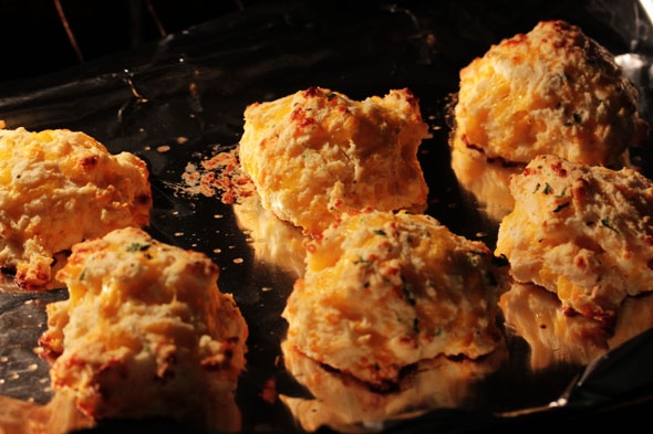 cheddar biscuits (red lobster style)