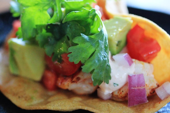 Shrimp & Salmon tacos
