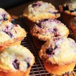 blueberrymuffins24