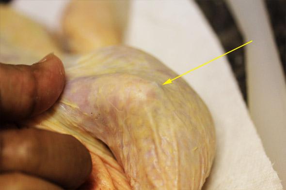 Meyer Lemon & Garlic Roasted Chicken