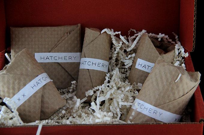 hatchery5
