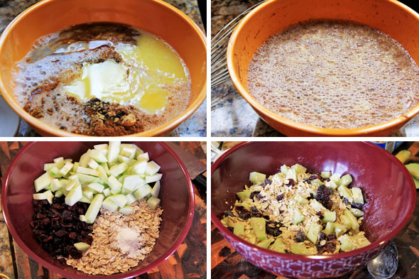 in a medium bowl, add the almond milk, egg, melted butter, spices, brown sugar, maple syrup, salt, and extracts. whisk together until evenly combined. In another bowl, add the oats, cranberries, baking powder and apples. Mix it all together evenly.