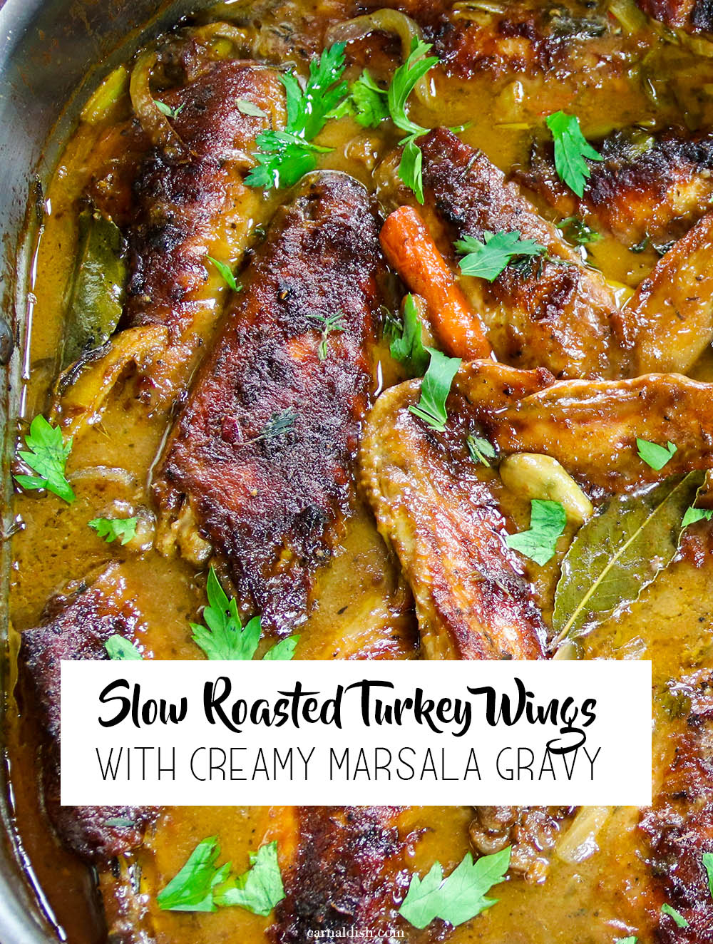 Slow roasted succulent fall off the bone turkey wings bathed in a creamy marsala gravy. Super hearty, easy, and tastes like grandma. So good | #smotheredturkeywings #turkeywings #roastedturkeywings #sundaydinner #turkey #christmasdinner #thanksgiving #carnaldish