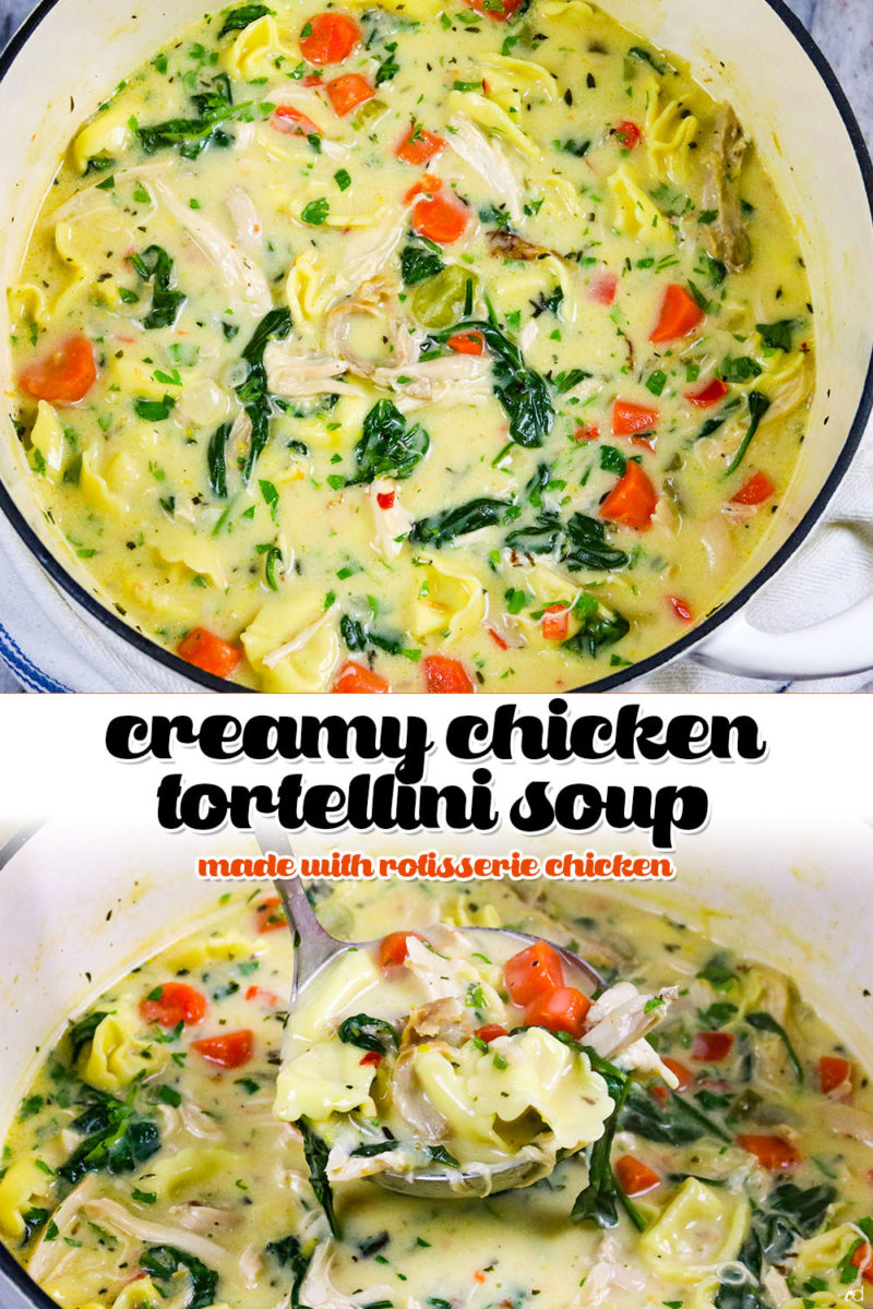 Creamy Rotisserie Chicken Tortellini Soup, easy to create and richly flavored. The best creamy chicken tortellini soup you'll ever have #carnaldish #chickensoup #chickentortellinisoup #creamychickentortellinisoup #tortellinisoup #souprecipes #comfortfood